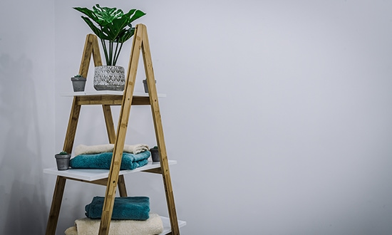 Plant on a towel stand